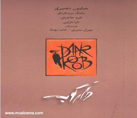 اولین آلبوم گروه موسیقی دارکوب منتشر شد