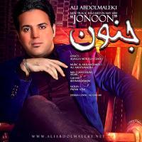 قطعه «جنون» با صدای علی عبدالمالکی