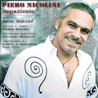 همکاری مشترک «امین حبیبی» و «پیرو نیکولینی» در جمع بهترین آثار سایت «jamendo» قرار گرفت